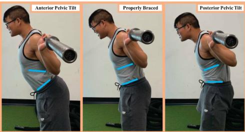 低杠背蹲的技术特点及应用